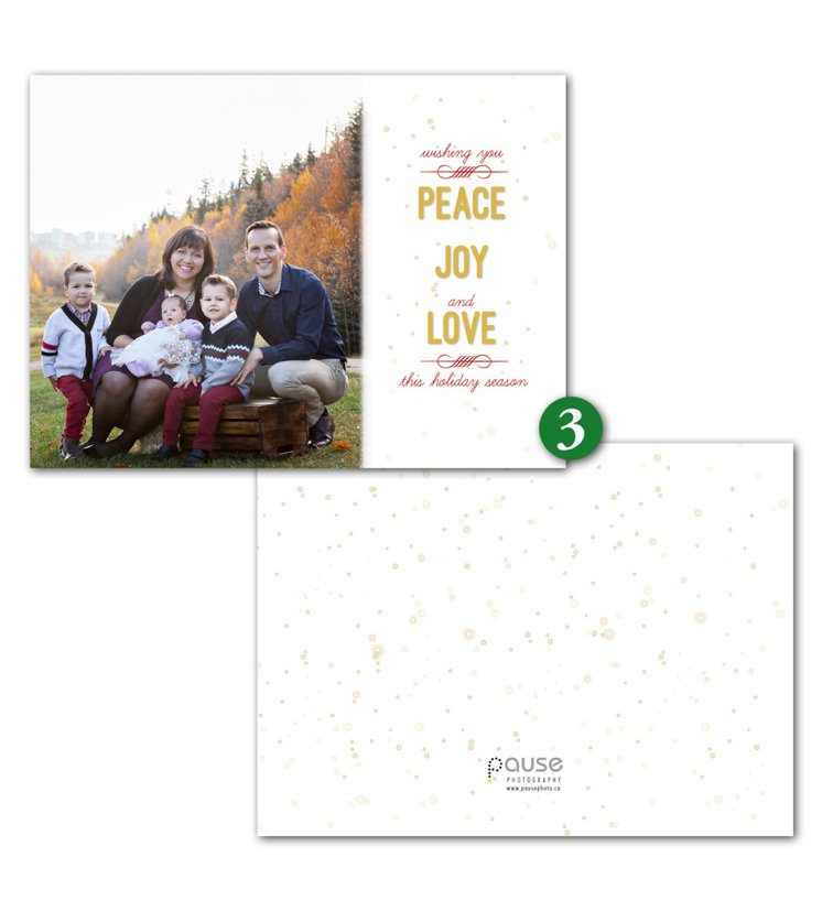 Pause Photography 2015 Holiday Card Designs 3