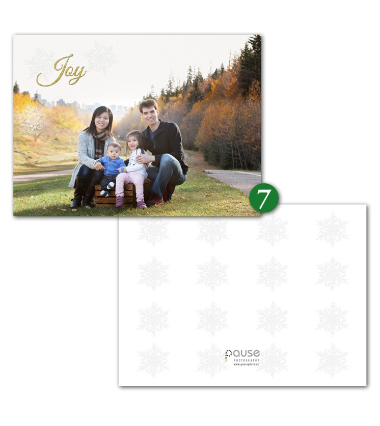 Pause Photography 2015 Holiday Cards Design 7
