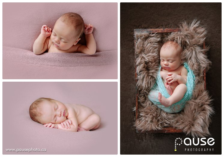 Best Edmonton Newborn Photographer
